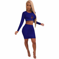 Casual Two Piece Skirts Set