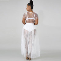 Pearl Studded Net Yarn Sheer Pleated Skirt Set