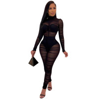 Solid Color See Through Pleated Bodysuit