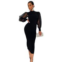 Black Turtleneck Mesh Lantern Sleeve Mid Dress