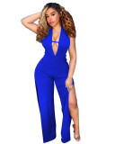 Sexy Halter Backless Jumpsuit