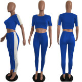 Casual Short Sleeve Sports Cro Top and Trousers