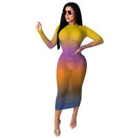 Casual Gradient Perspective Mesh Print Maxi dress