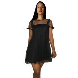 Casual Mesh O Neck See Through Mini Dress