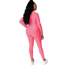 Casual Fish Scale Stretch Hooded Sports Pant Set