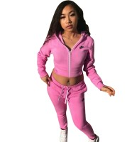 Casual Letter Embroidered Sweatshirt Pant Set without Hooded