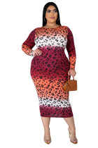 Plus Size Fat Gradient Mid Dress
