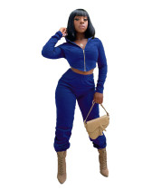 Solid Color Zipper Hoodie Crop Top and Trousers