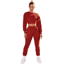 Solid Color Crop Top and Pants