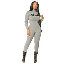 Casual Embroidered High Neck Crop Top and Pant
