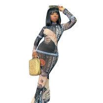 US Dollar Print Mesh Maxi Dress