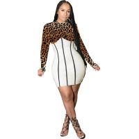 Spliced Leopard Print Club Dress