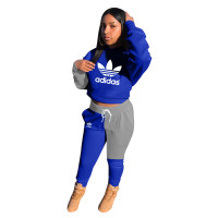 Casual Matching Embroidery Hooded Pant Set