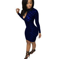 High Neck Flocked Mesh Party Dress with Zipper Back