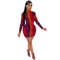 Casual Print High Neck Mini Dress