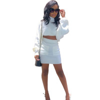 Solid Color High Neck Crop Top and Skirt with Pocket