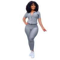 Casual Jacquard Short Sleeve Sports Yoga Pant Set