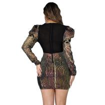 Sexy Zipper Sequin A-line Mini Dress