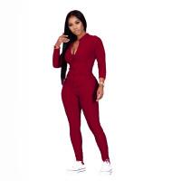 Casual Jacquard Sports Homewear Pant Set