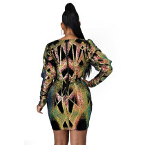 Invisible Zipper Sequins Nightclub Dress