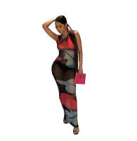 Sexy See-through Mesh Print Sleeveless Long Dress
