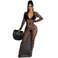 Sexy Through Long Dress