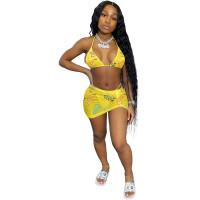 Summer Print Sexy Bikini Set and Mini Skirt