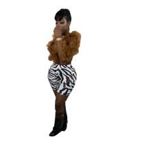 Printed Striped Shorts