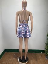 Sexy Plaid Printed Skirt Set