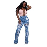 Ripped Micro Flared Jeans