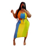 Plus Size Sleeveless Colorful Crop Top and Long Skirt
