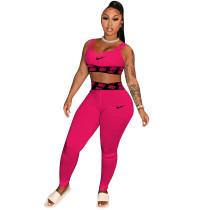 Sexy Yoga Wear Loungewear Sports Two Piece Set