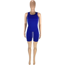 Solid Color Round Neck Sleeveless Vest Shorts Sports Two Piece Outfits