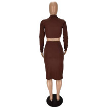 Solid Color Shirt Collar Crop Top and Drawstring Pleated Skirt