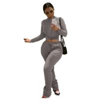 Solid Color Grey Zipper Velvet Two-piece Set with Pocket
