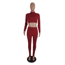 High Neck Soft Ribbed Two Piece Women Clothing Set