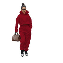 Casual Wine Red Thick Sweatshirt Hoodie Two Piece Set