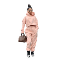 Casual Pink Thick Sweatshirt Hoodie Two Piece Set