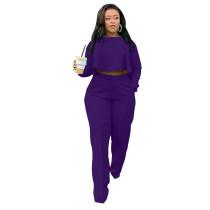 Autumn Solid Purple High-Low Top & Pants Set