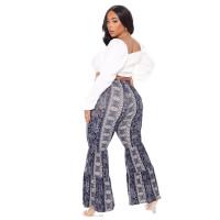 National Style Paisley Print Flared Long Pants