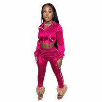 Solid Color Rose Zipper Cropped Hoodie Trousers Two Piece Set