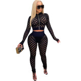 Women's Casual Black 2 Piece Outfits Sheer Jacquard Hole Long Sleeve Blouse Tops and Pants Clubwear Set