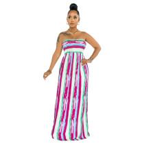 Summer Stripes Printed Strapless Tube Maxi Dress