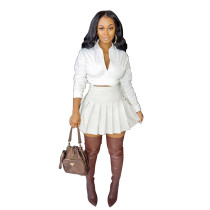 Solid Color White Fall Dress Two Piece Pleated Skirt Set