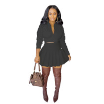 Solid Color Black Fall Dress Two Piece Pleated Skirt Set