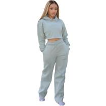 Casual Solid Grey Drawstring Long Sleeve Sweatpants Hoodie Set For Women