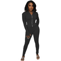 Solid Color Black High Neck Zipper Up Sports Two Piece Fall Set