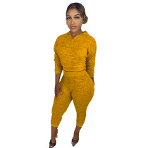 Womens Fall Clothing 2021 Solid Yellow V Neck Sweatpant and Hoodie Set For Women