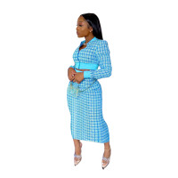 Light Blue Printed Threaded Plaid 2 Two Piece Set Women Long Sleeve Jackets Bodycon Mid Skirts Suit