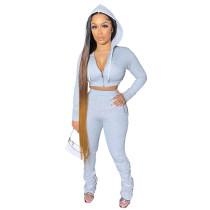 Solid Color Light Grey Zipper Velvet Hoodie Sweatpant Two Piece Winter Filed Sleeves Piled Pants Set